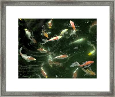 Swimming In Circles Framed Print by Ron Morecraft