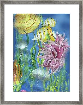 Swimming With The Jellies Framed Print