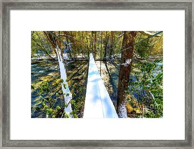 Swinging Bridge Framed Print by Thomas R Fletcher