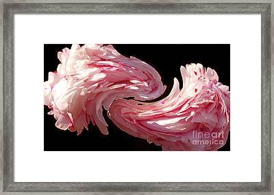 Swirl Framed Print by Kathleen Struckle