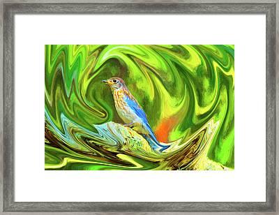 Swirling Bluebird  Framed Print