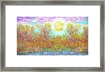 Framed Print featuring the digital art Swirling Brilliant Trees - Boulder County Colorado by Joel Bruce Wallach
