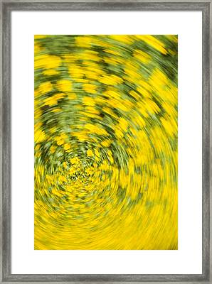 Swirling Flowers Framed Print