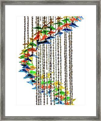 Swirls Of Brightly Colored Seashells Framed Print
