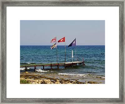 Swiss Navy Framed Print