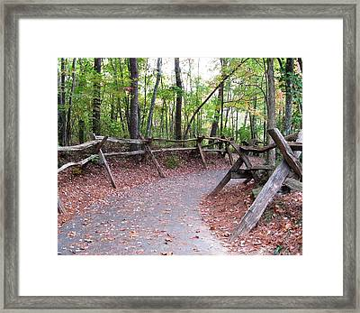 Switchback Walkway Framed Print by Suzanne  McClain
