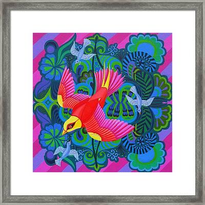 Swooping Bird Framed Print by Jane Tattersfield