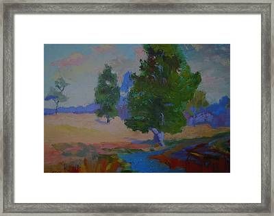 Sycamore And Brook - Ohio Pasture Framed Print