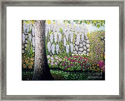 Sycamore Garden Framed Print by William Ohanlan