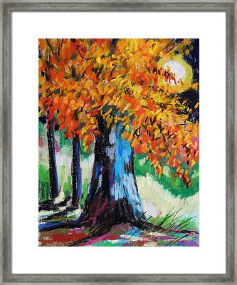 Sycamore Moon Framed Print by John Williams