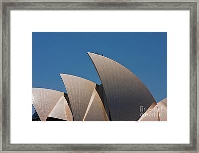 Sydney Opera House Sails Framed Print by John Buxton