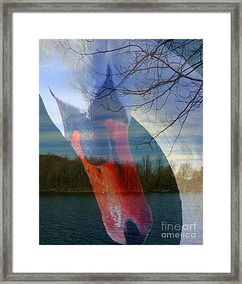 Symbiosis Framed Print
