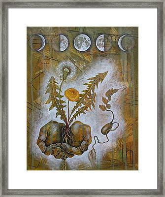 Symbiosis Framed Print by Sheri Howe