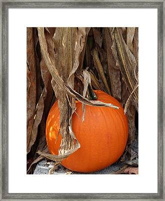 Symbols Of Fall Framed Print by Linda A Waterhouse