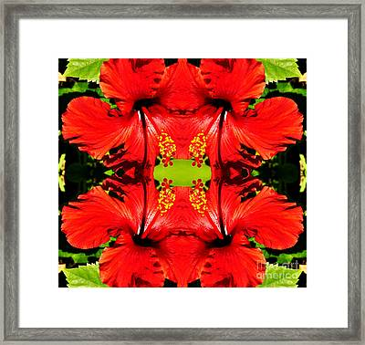 Symmetry Framed Print by Clayton Bruster