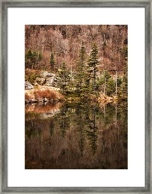 Symmetry Framed Print by Heather Applegate