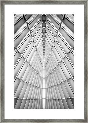 Symmetry Framed Print by Scott Norris