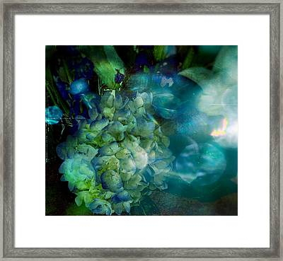 Symphony In Blue Framed Print