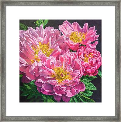 Symphony Of Peonies 6 Framed Print by Fiona Craig