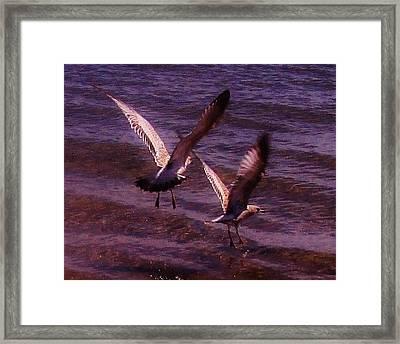 Synchronized Landing Framed Print