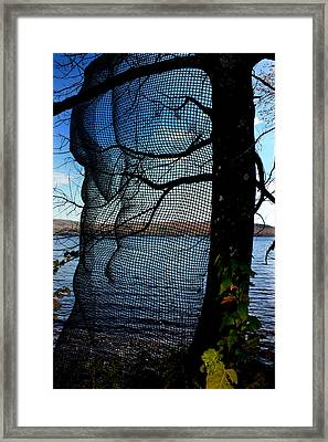 Synchronizing Body And Nature  Framed Print