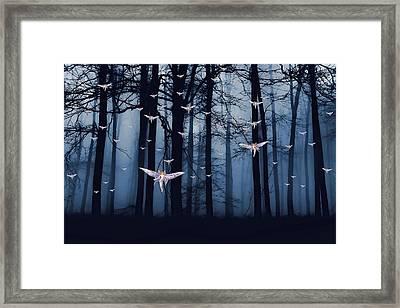 Synchronous Fairies Fly Framed Print by John Haldane