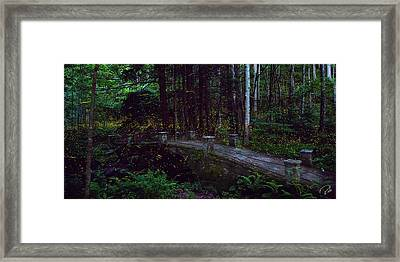 Synchronous Fireflies Framed Print by Rob Beverly