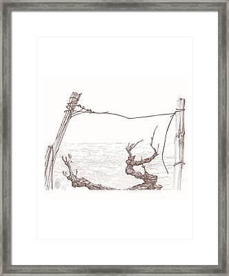 Syrah St Joseph Cotes Du Rhone France Framed Print by L Madras Neils