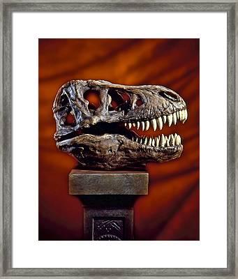 T Rex Skull Framed Print