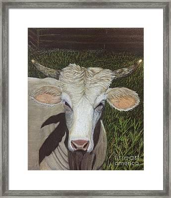 T-town Bull Framed Print