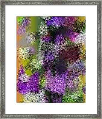 T.1.1900.119.4x5.4096x5120 Framed Print
