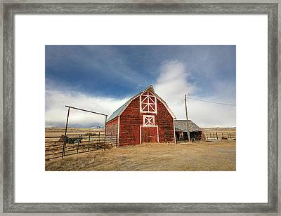 Tabacco Root Red Framed Print by Todd Klassy