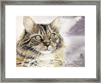 Tabby Cat Jellybean Framed Print by Keran Sunaski Gilmore
