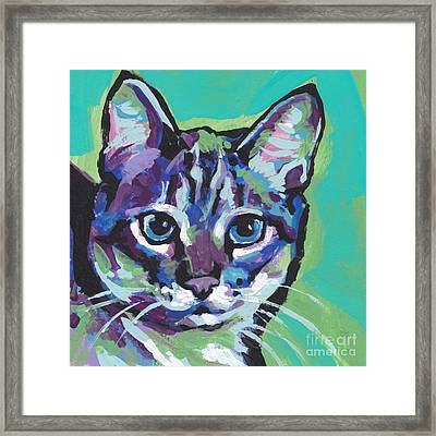 Tabby Chic Framed Print by Lea S