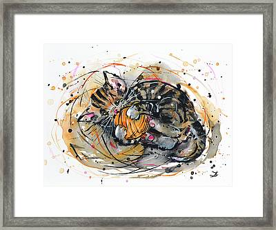 Tabby Kitten Playing With Yarn Clew  Framed Print