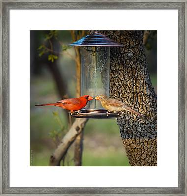 Framed Print featuring the photograph Table For Two by Debbie Karnes