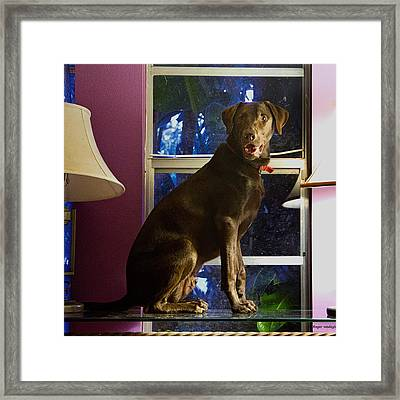 Table Ornament Framed Print by Roger Wedegis
