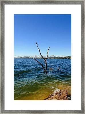 Table Rock Lake Kimberling City Framed Print