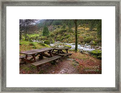 Tables By The River Framed Print by Carlos Caetano
