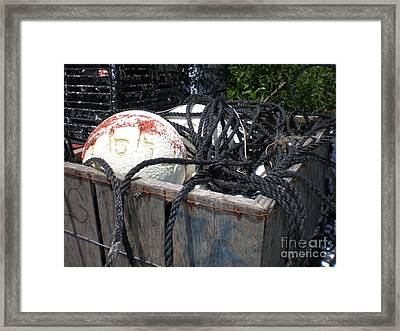 Tackle Box Framed Print by Jeffrey Zipay