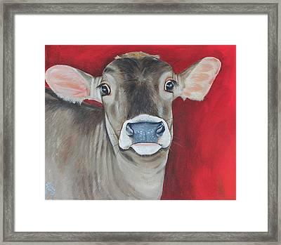Taffy Framed Print by Laura Carey