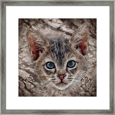 Taffy Framed Print