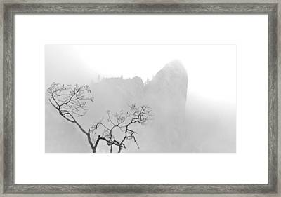 Taft Point In Mist Framed Print
