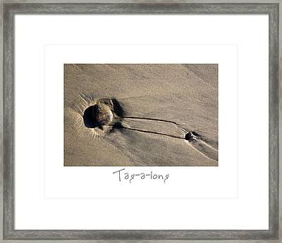 Tag-a-long Framed Print by Peter Tellone