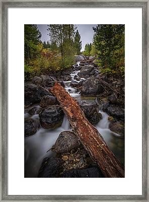 Taggert Creek Waterfall Log Framed Print