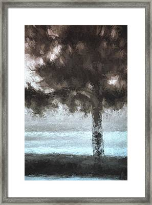 Tahoe Pine Painterly Effect Framed Print by Carol Leigh