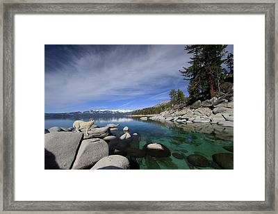 Tahoe Wow Framed Print