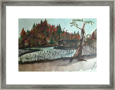 Tahquamenon River Framed Print