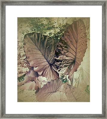 Tai Giant Abstract Framed Print