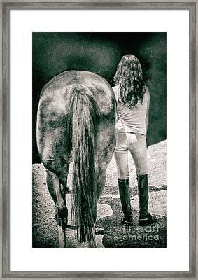 Tails Framed Print by Steven Digman